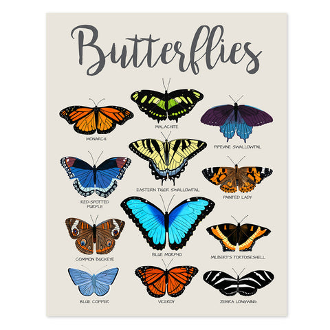 butterfly poster - telegraph paper co