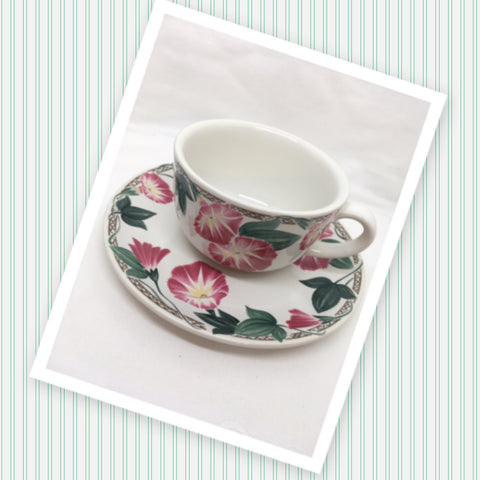 Cup and Saucer Morning Glory Design Cafe Classico By Nancy Calhoun Japan