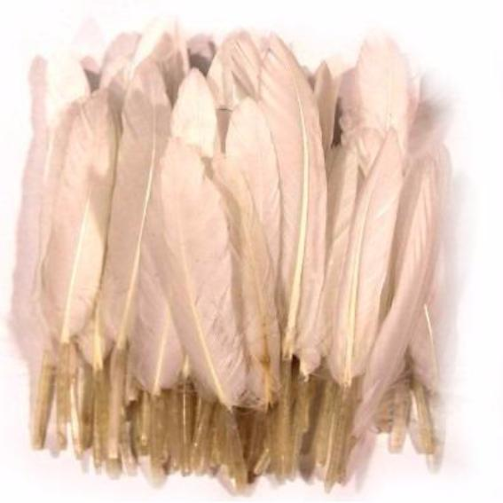 Tiny Goose Pointer Feathers 10 grams - White
