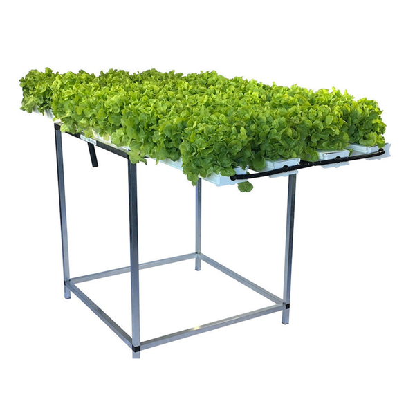 52 Plant Salad Table