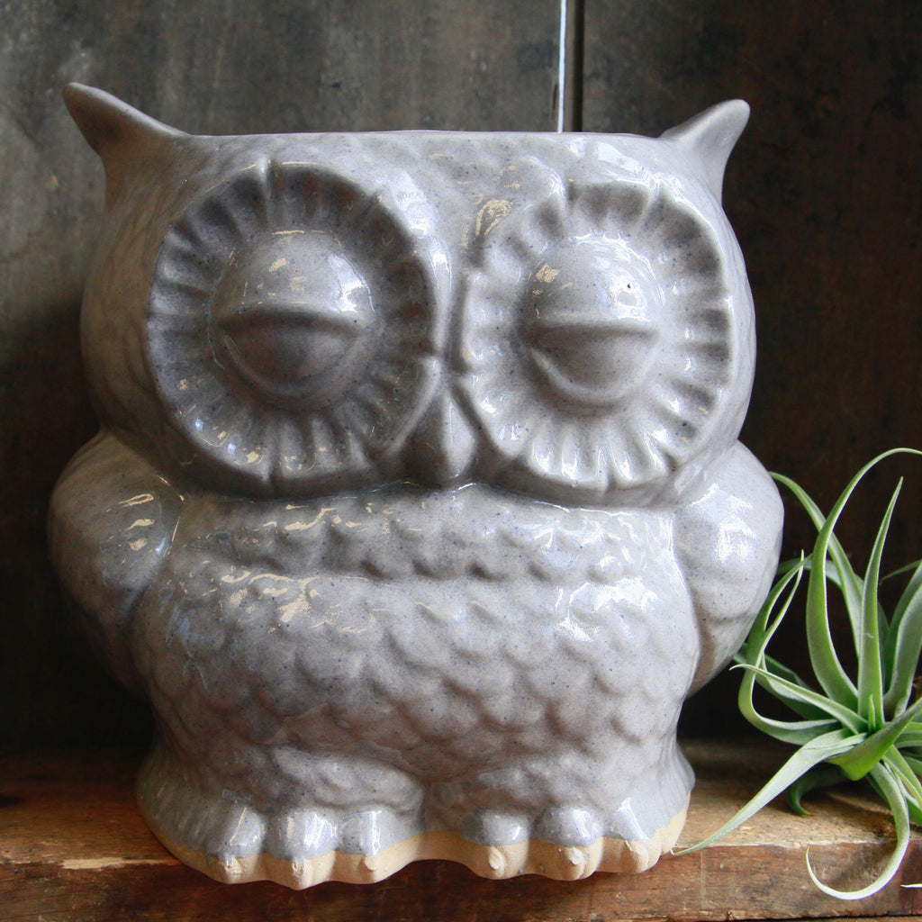Claylicious - Large Ceramic Owl