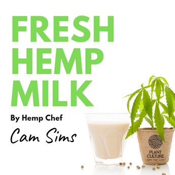 HOMEMADE HEMP MILK RECIPE