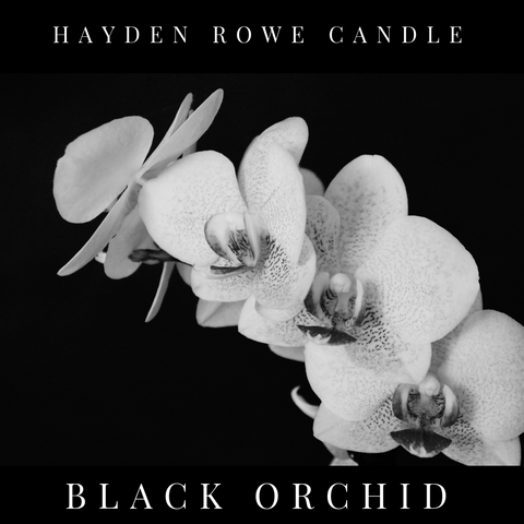 Black Orchid Scented Wax