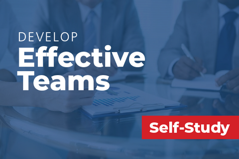 Develop Effective Teams