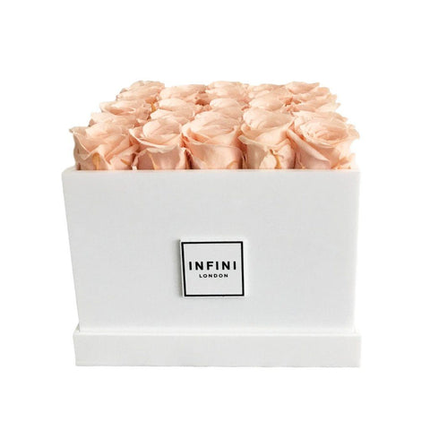 White Diamond - Peach Roses - INFINI roses that last a year