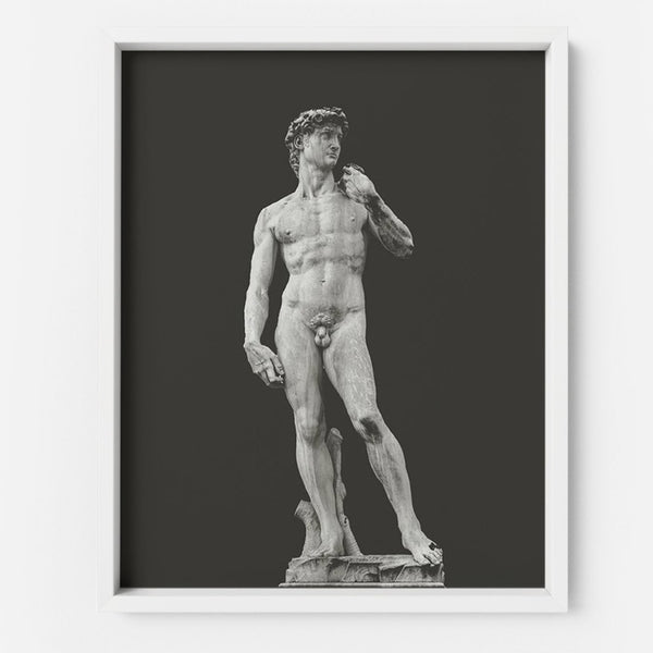 David - THE PRINTABLE CONCEPT - Printable art posterDigital Download -