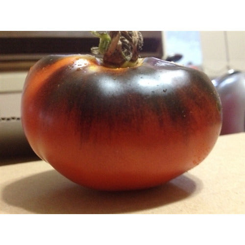 TOMATO 'Red and Blue' / 'Indigo Rose' *RARE*