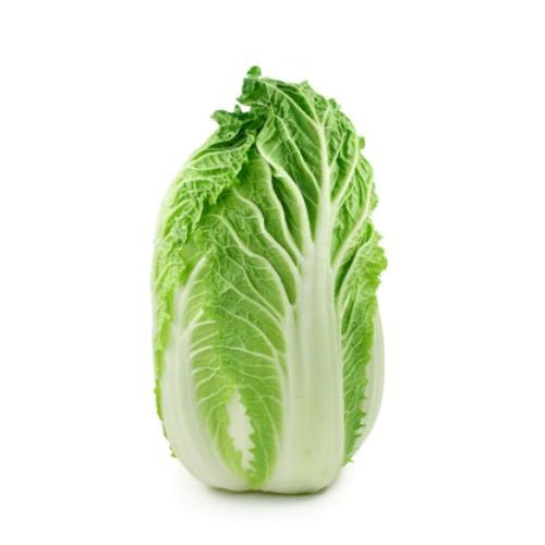 CHINESE CABBAGE  / WONG BOK / WOMBOK 'Mini Head' - Boondie Seeds
