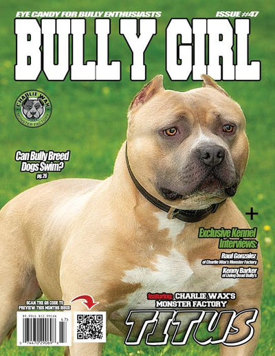 Bully Girl - Digital Issue 47 - BGM Warehouse