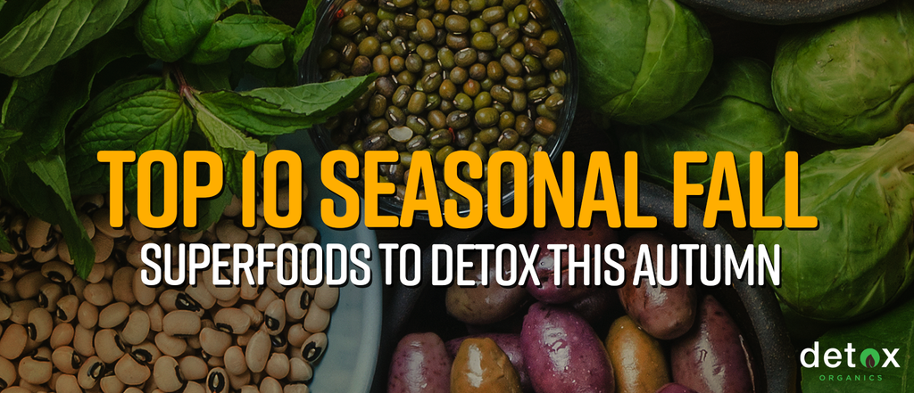 Top 10 Seasonal Fall Superfoods to Detox This Autumn