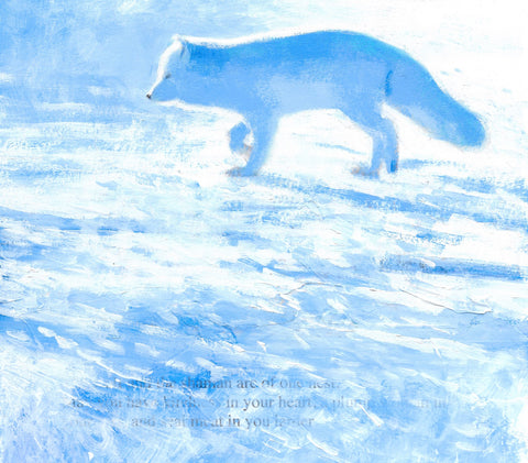 Arctic Fox Limited Edition Print