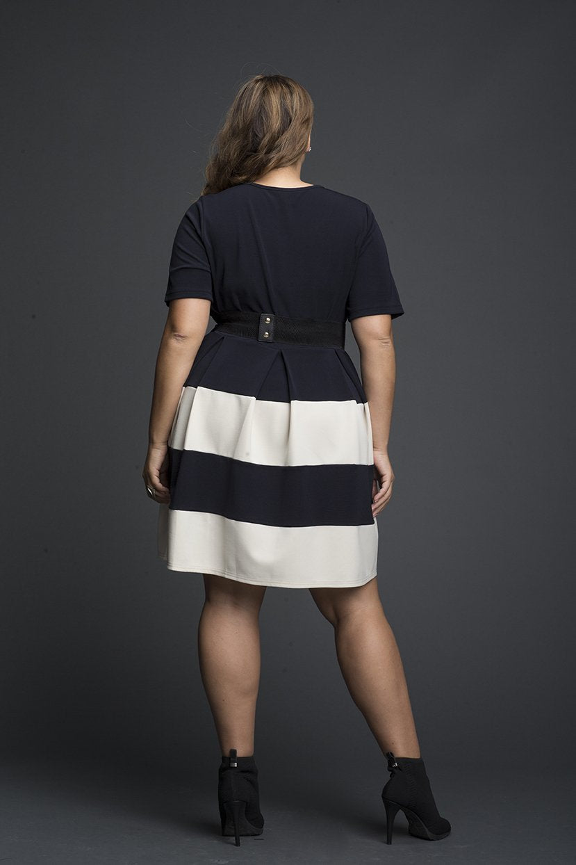 Box Pleated color block Dress
