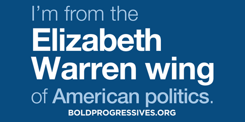 """I'm from the Elizabeth Warren wing of American politics"" sticker"