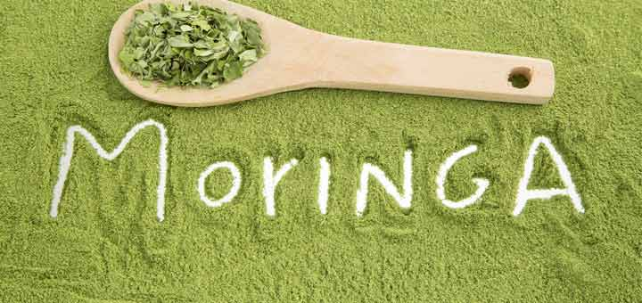 Moringa - A Solid Solution for Anemia
