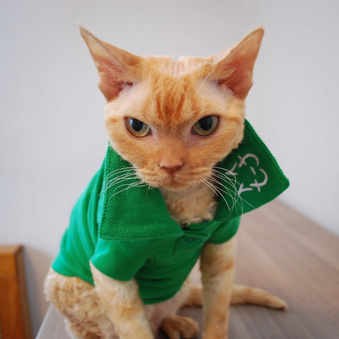 Wesley Polo - Emerald - Cat-toure Cat Clothes