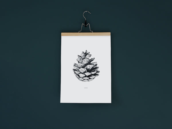 Au Naturel - Black and white Art print of a fir cone by Hanna Candell