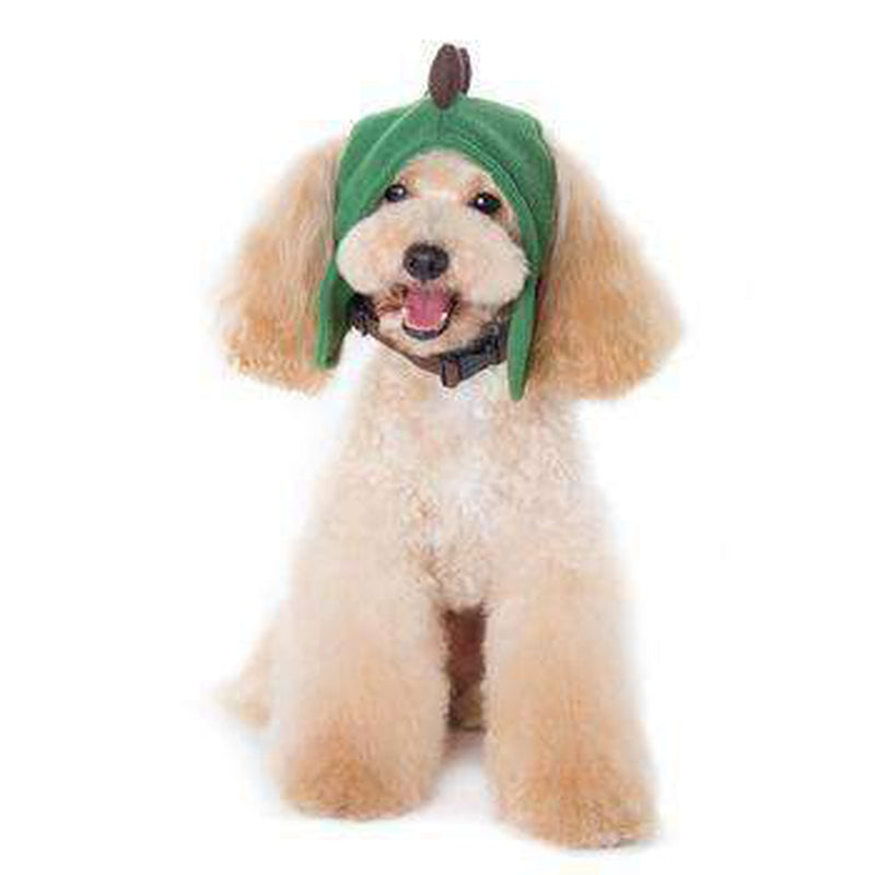 Dino Dog Hat, Pet Accessories, Furbabeez, [tag]