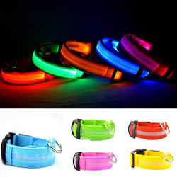 Dog/Cat LED collar - USB Rechargeable - Shakespurr
