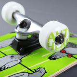 "Anti Hero 'Conference Call XL' 8.25"" Complete Skateboard (Green) - CSC Store"