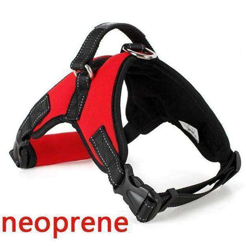 Harnais de sécurité - Red Neoprene / S - Lovely bouledogue
