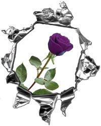 Mini Ripped Torn Metal Decal with Purple Rose
