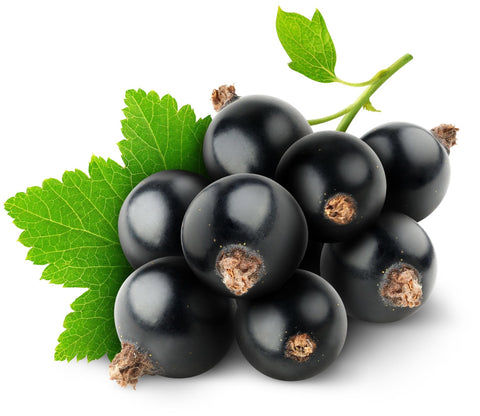 Blackcurrant E Liquid