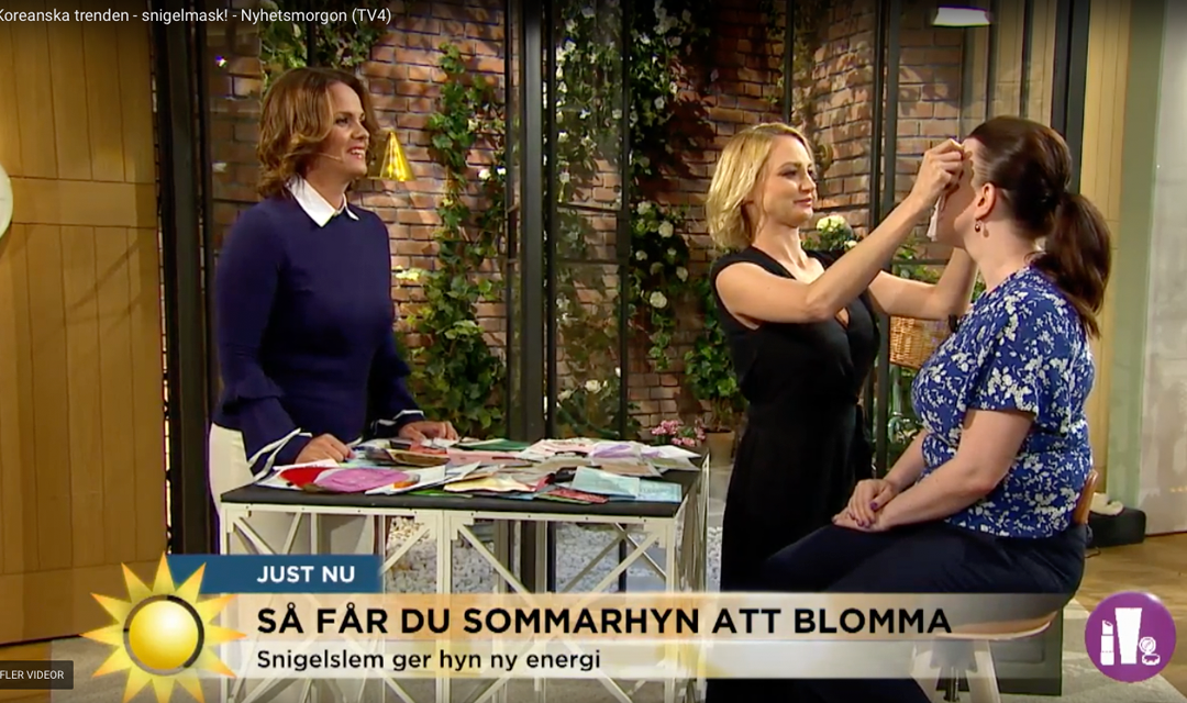 SKINiD at Swedish Morning TV 2017.