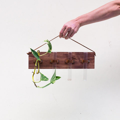 Harvest House | Test Tube Plant Hanger