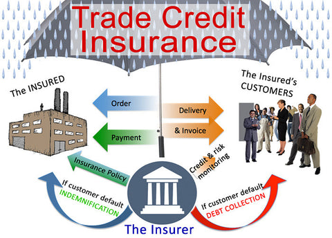 How Trade Credit Insurance Can Help Your Cash Flow