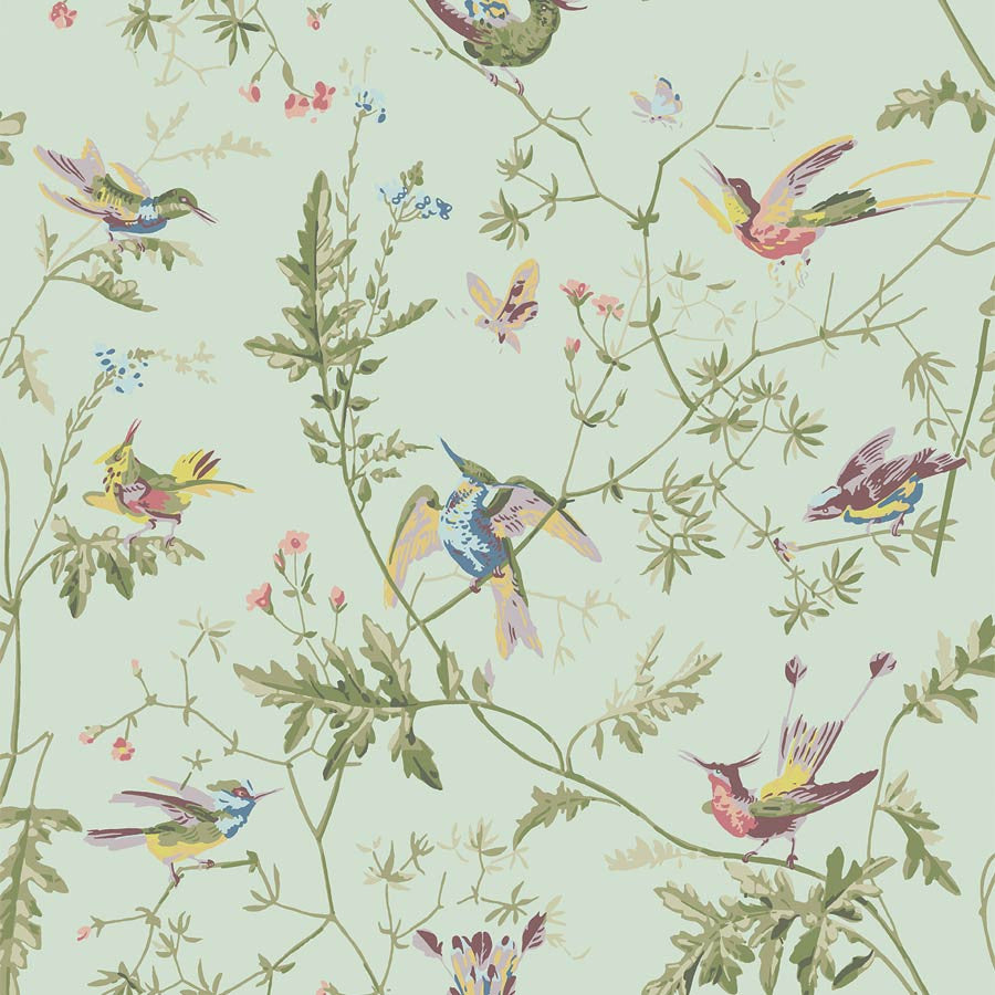 Duckegg Hummingbird - Tapet - Cole & Son