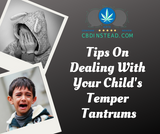 Tips On Dealing With Your Child's Temper Tantrums
