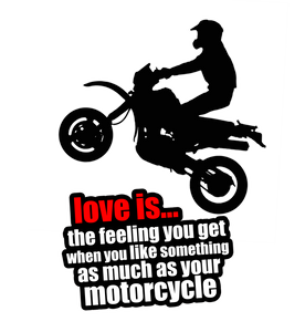 LOVE OF THE MOTORCYCLE