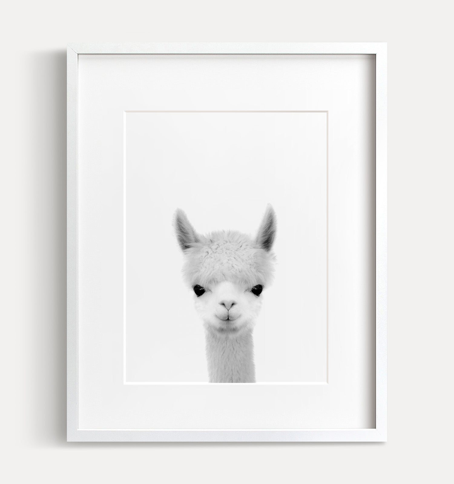 Baby Alpaca Print - Black and White - The Crown Prints