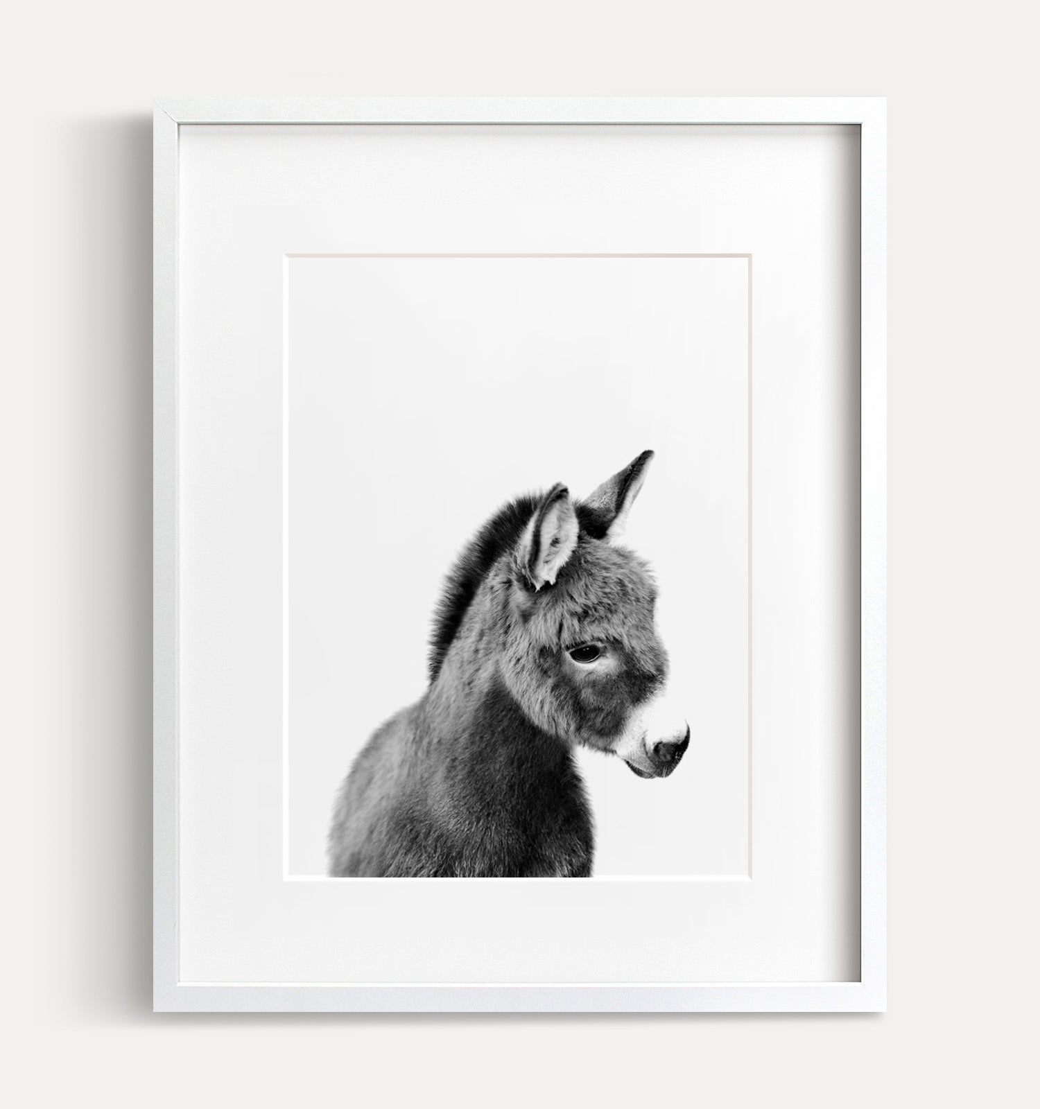 Baby Donkey Print - Black and White - The Crown Prints
