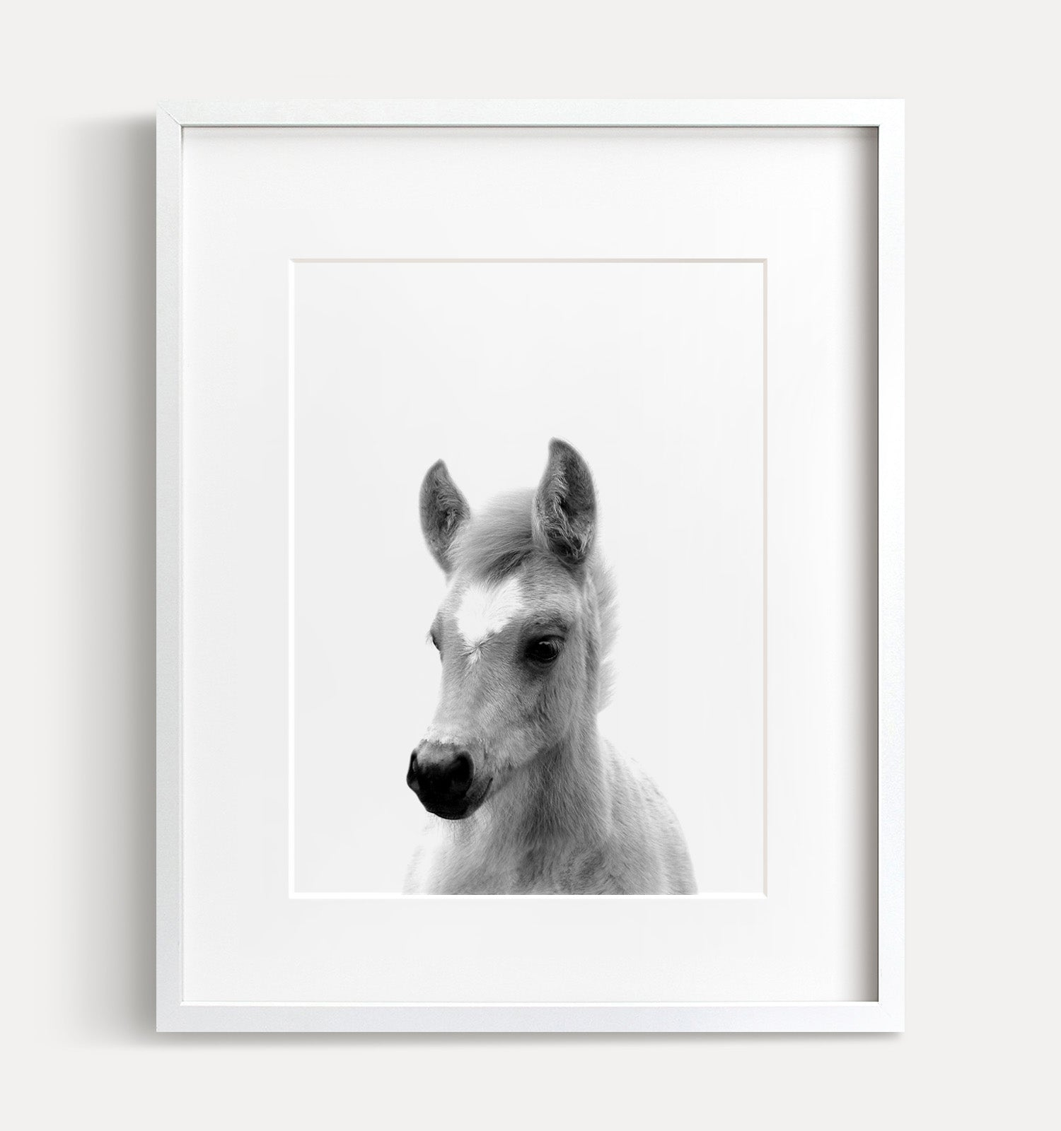 Baby Horse Printable Art - Black and White