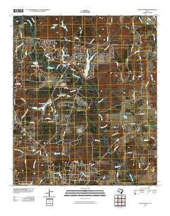 Shady Grove Texas Historical topographic map, 1:24000 scale, 7.5 X 7.5 Minute, Year 2010