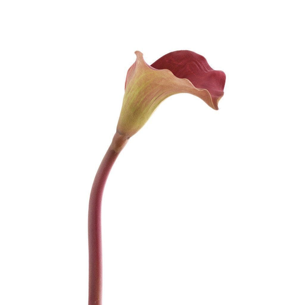 Calla Bloomr Home Artificial Flowers and Trees