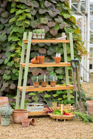 Verdi Plant Shelf