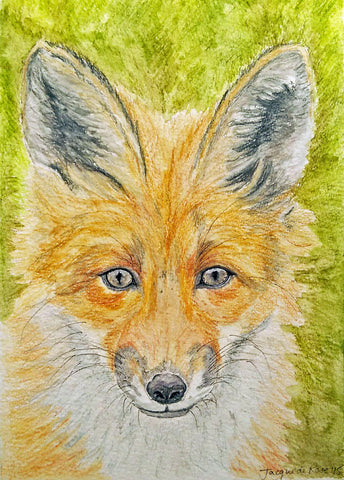 "Card - 7 x 5"" - Animal - Red Fox"
