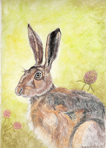 "Card - 7 x 5"" - Animal - Hare"