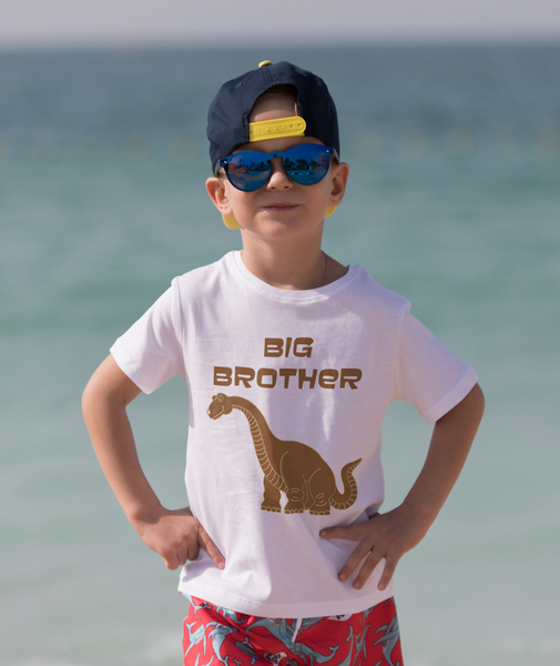 Gifts For Boys :: Dino Brothers T-Shirt Sticker Set :: HTV Dinosaur Decal-HTV Iron On Decal-TD Gift Solutions.com