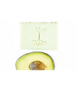 Avocado Soap