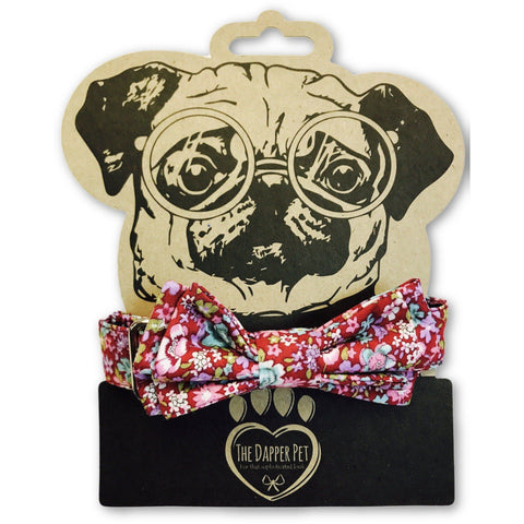 The Dapper Pet Spring Bow Tie Collar - Pet Bound Co.
