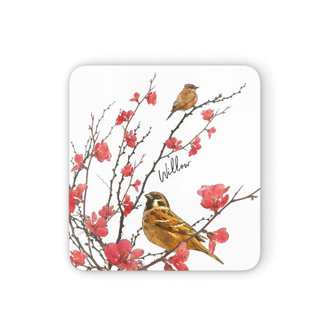 Personalised Birds Coasters set of 4