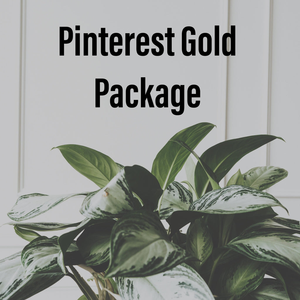 Pinterest Management Gold Package