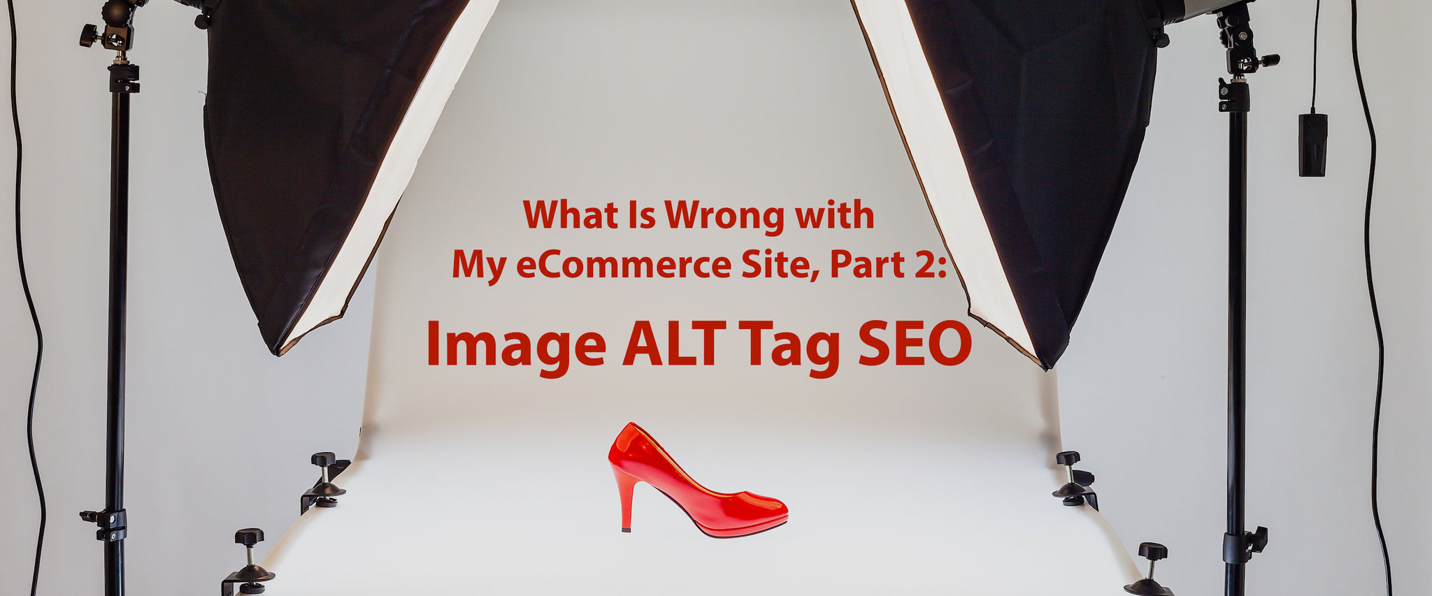 What Is Wrong with My eCommerce Site, Part 2: Image ALT Tag SEO