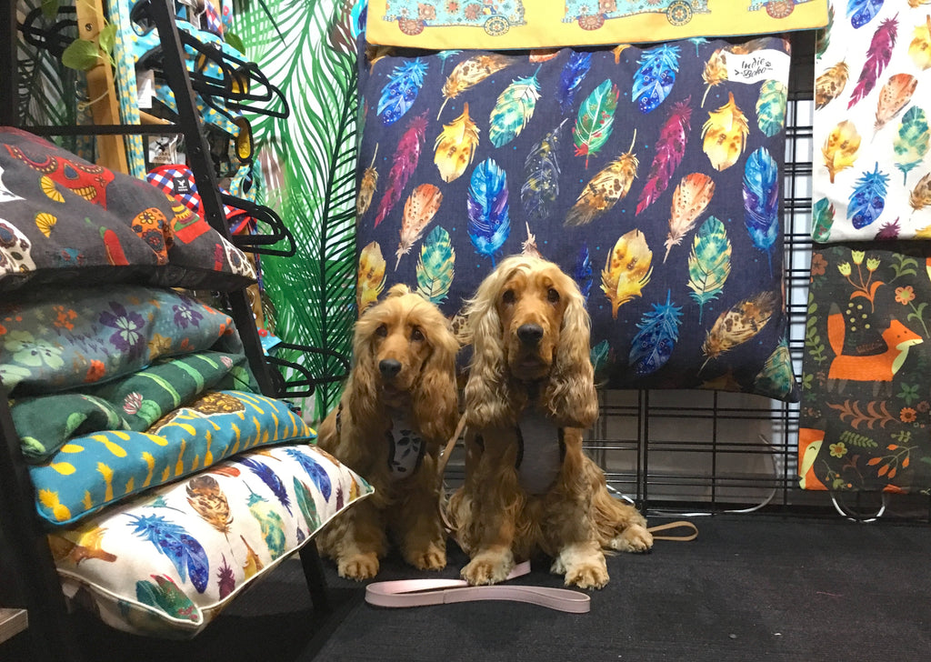 Dog Lovers Show Brisbane and Upcoming Events in 2017