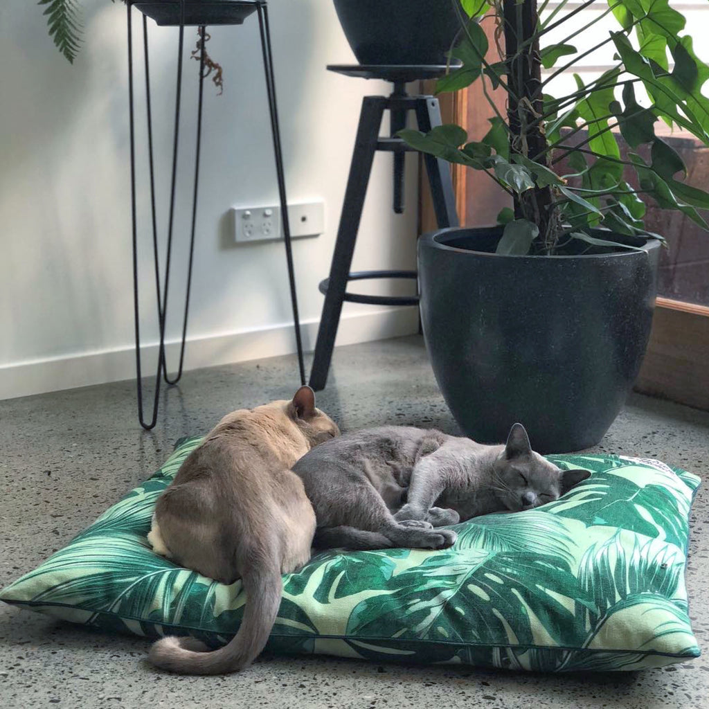Tropical Leaves – EXTRA LARGE Dog Bed