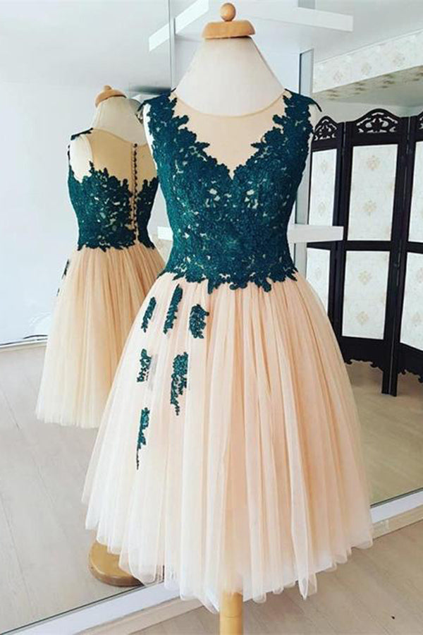 Chic Round Neck Organza With Lace Appliques Homecoming Dress M595