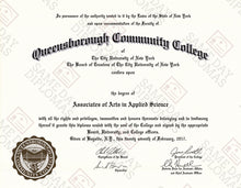 Bachelor Degree Diploma & Transcripts